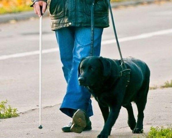 """Jedna z warszawskich restauracji wyprosiła niepełnosprawnego. """"Przez psa przewodnika"""""""
