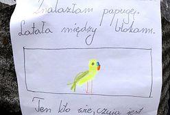 9-latka uratowała papugę. Jej ogłoszenie chwyta za serce