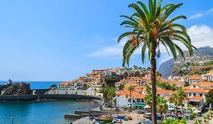 Madera - wyspa wiecznej wiosny. 7 powodów, dla których warto ją odwiedzić