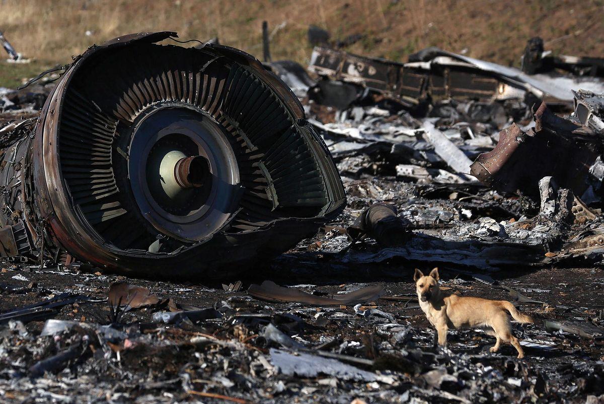 Katastrofa MH17. Ważny świadek przekazany Rosji. Holandia wystąpiła o ekstradycję