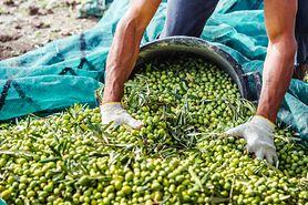 Kiszone oliwki - właściwości zdrowotne
