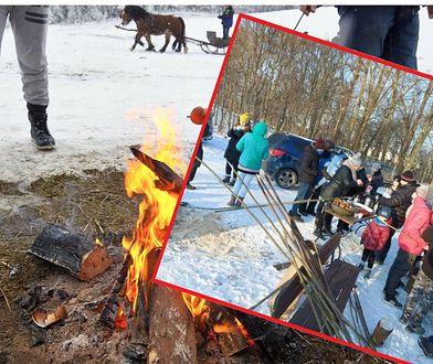 Nielegalne ognisko na 50 osób. Atrakcję zorganizowały władze wsi