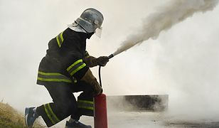 W akcji gaśniczej brało udział siedem zastępów strażaków