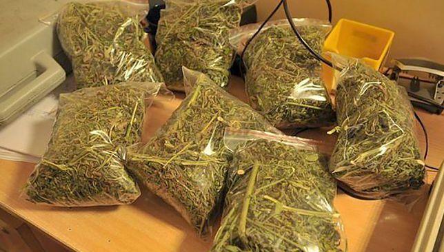 Policja twierdzi, że to jeden z największych transportów narkotyków, jakie przechwycono na Pomorzu