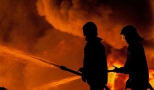 Pożary traw na Mazowszu. Rekordowe liczby