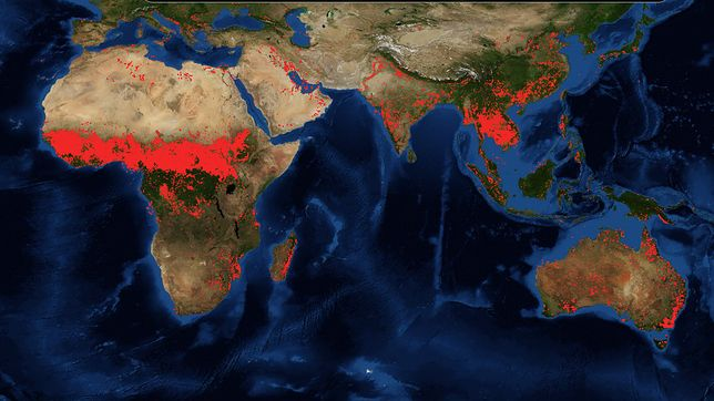 Zdjęcie satelitarne przedstawiające miejsca występowania pożarów