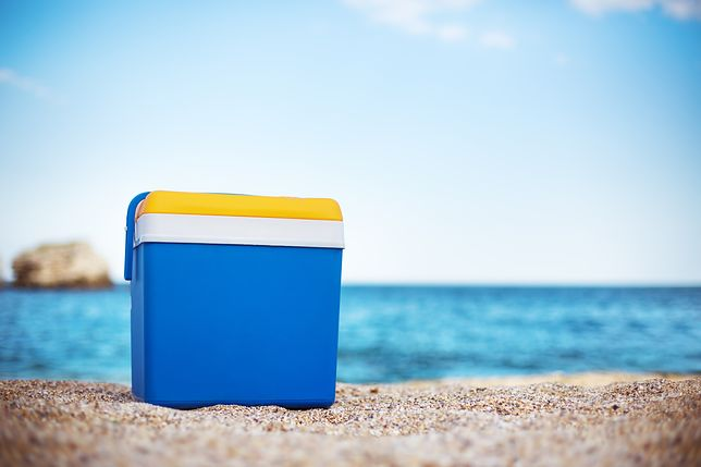 Lodówka turystyczna to dobry wybór na plażę