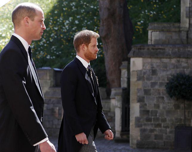 William i Harry po raz pierwszy razem