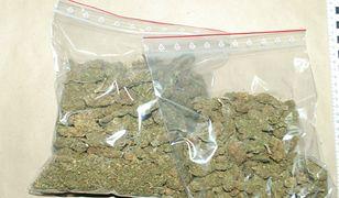 Przechwycona marihuana