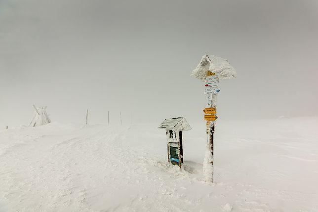 Jeśli pogoda będzie dalej taka kapryśna, to o takie zdjęcie może być trudno zimą 2020