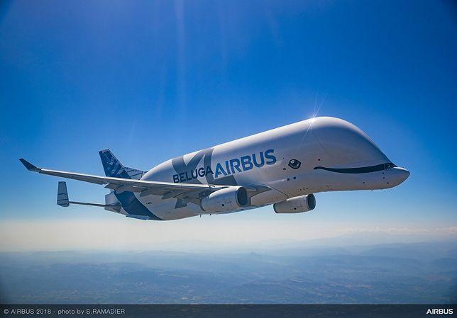 Latający delfin? Nie, to nowy model Airbusa