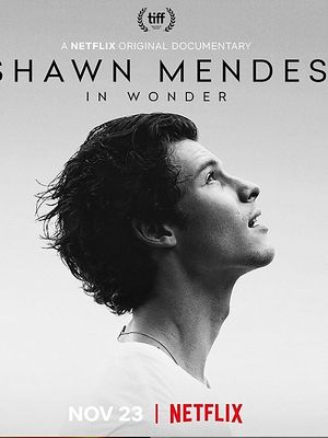 Shawn Mendes na Netflix