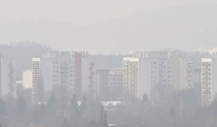 Życie ze smogiem