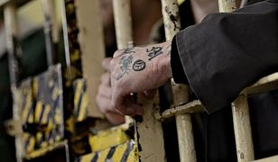 Z więzienia do języka potocznego