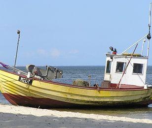 Coraz mniej ryb w Zatoce Puckiej. Niewykluczone, że to przez PGNiG