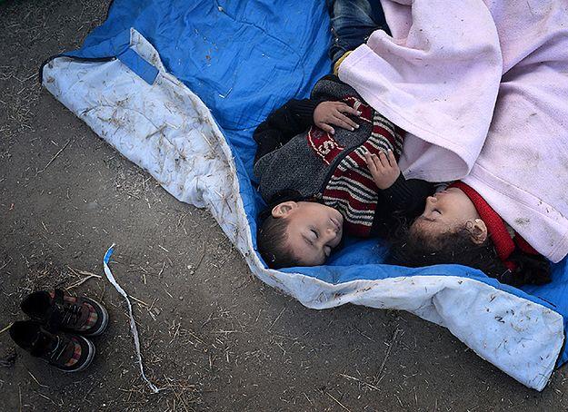 Prymas Polski abp Wojciech Polak: przyjęcie uchodźców wymaga skoordynowanego działania