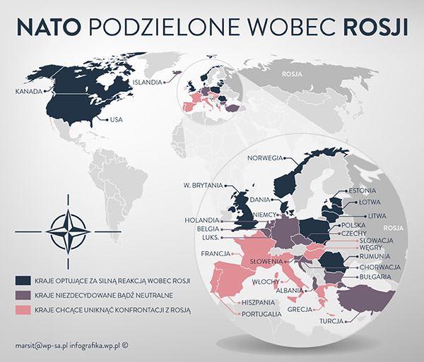 """NATO podzielone wobec Rosji - kto """"jastrzębiem"""", a kto """"gołębiem""""? Zobacz infografikę"""
