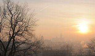Smog w Krakowie. Collegium Medicum UJ: połowa krakowskich uczniów cierpi na alergię