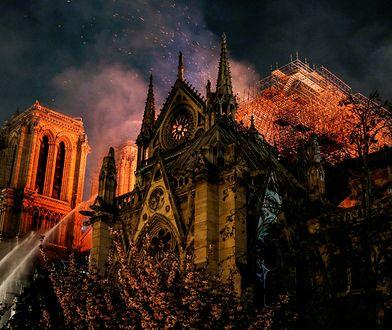 Firmy pomagają odbudować Notre Dame