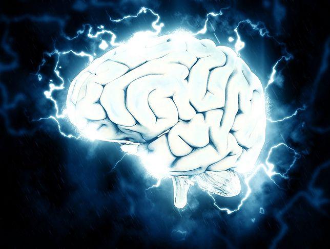 Możliwości mózgu człowieka po raz kolejny zaskoczyły naukowców