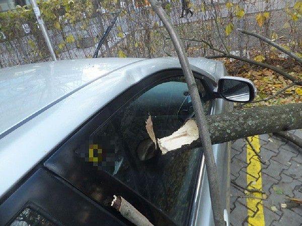 Połamane drzewa i znaki drogowe. Silny wiatr przeszedł przez Warszawę