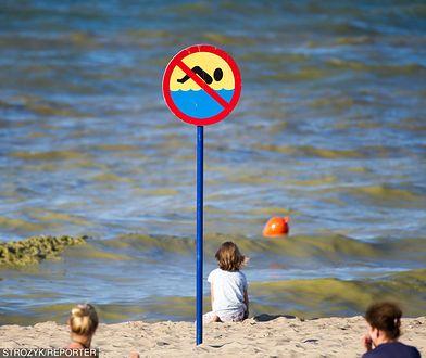 Legionowski Sanepid ostrzega przed kąpielą w trzech miejscach nad Zalewem Zegrzyńskim