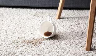 Uciążliwe plamy na dywanie? Zobacz, jak się ich pozbyć