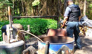 50-procentowy alkohol z lasu na Podlasiu. Akcja służb