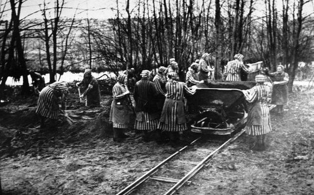 Więźniarki obozu Ravensbrück poza niewolniczą pracą, padały również ofiarą nieludzkich eksperymentów medycznych. Wśród ich oprawców był Walter Paul Schreiber