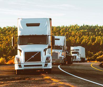Ubezpieczenie OC samochodu ciężarowego - ile kosztuje i jak kupić najlepsze?