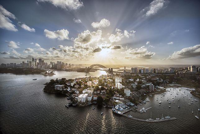 Widok na Sydney