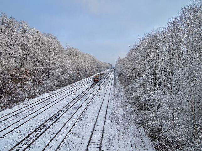 W czasie pandemii część połączeń kolejowych zostało zawieszonych