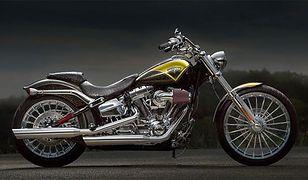 Harley-Davidson: nowe modele na 110-lecie marki