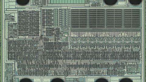 Na sukcesie Wii korzysta też AMD