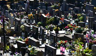 Wszystkich Świętych. Wiceminister zdrowia apeluje do Polaków