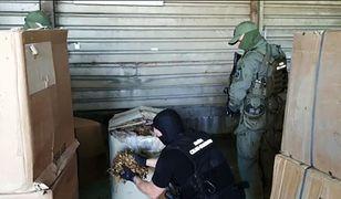 Skarbówka przechwyciła 20 ton nielegalnego suszu tytoniowego