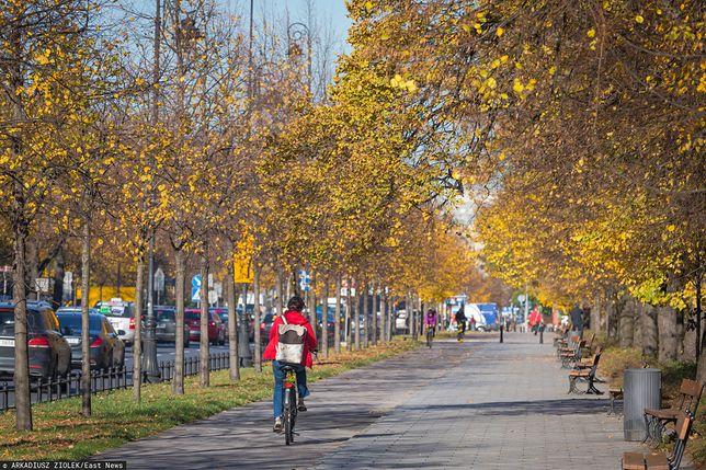 Warszawa. 43-letni mężczyzna podróżował z amfetaminą na kradzionym rowerze miejskim / foto ilustracyjne wyk.  2018-10-31