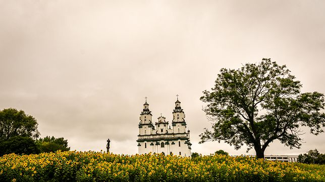 W Białymstoku jest coraz więcej miejsc pełnych zieleni