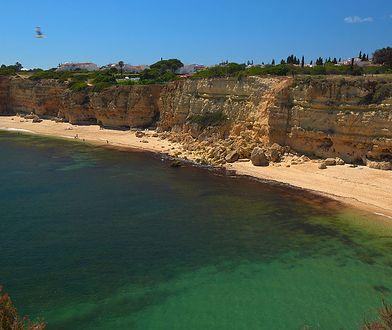 Plaża w okolicy Albufeiry w Portugalii
