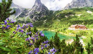 Restrykcje obowiązują także w schroniskach górskich