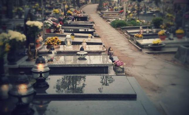 Pod cmentarzami we Wrocławiu będą kwesty Towarzystwa Pomocy im. św. Brata Alberta