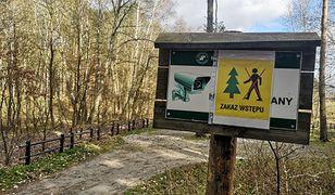 Lasy Państwowe wprowadziły zakaz wstępu do lasów od 3 do 19 kwietnia 2020 r. z powodu epidemii koronawirusa