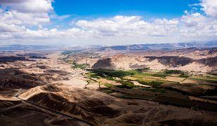 Peru. W pobliżu miasta Nazca odkryto olbrzymi wizerunek kota