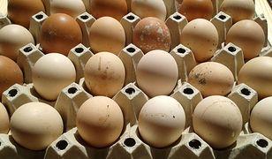 Przechowywanie jajek w temperaturze wyższej niż 8 stopni przyspiesza proces psucia