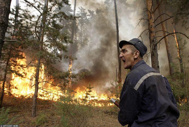Syberia znów stanęła w ogniu. Możliwa katastrofa? zdj. ilust.