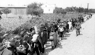 Ludność cywilna Warszawy w drodze do obozu przejściowego Dulag 121 w Pruszkowie