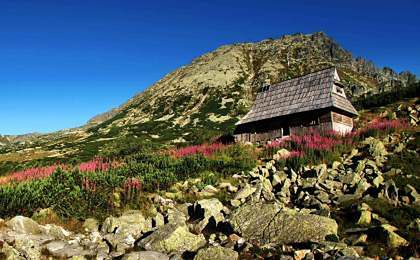 Dom z widokiem na Tatry za milion złotych