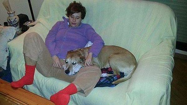 Teresa Romero z psem Excaliburem