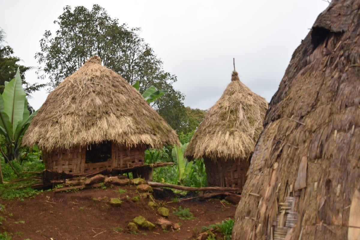 Niezwykłe plemię z Etiopii. Mieszkają w domach w kształcie głów słoni