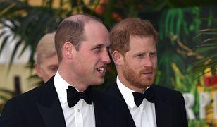 Fundacje Williama i Harry'ego oskarżone o brak niezależności